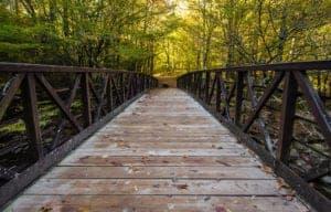 The Bridge along the Gatlinburg Trail