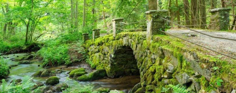 troll bridge in elkmont off little river trail