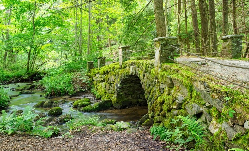 troll bridge in elkmont off little river trail